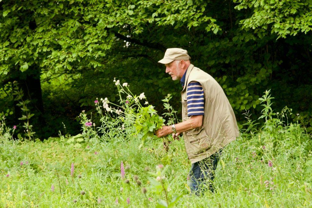 Botanikleiter Burkard Stratmann (Foto: Klaus Brink)