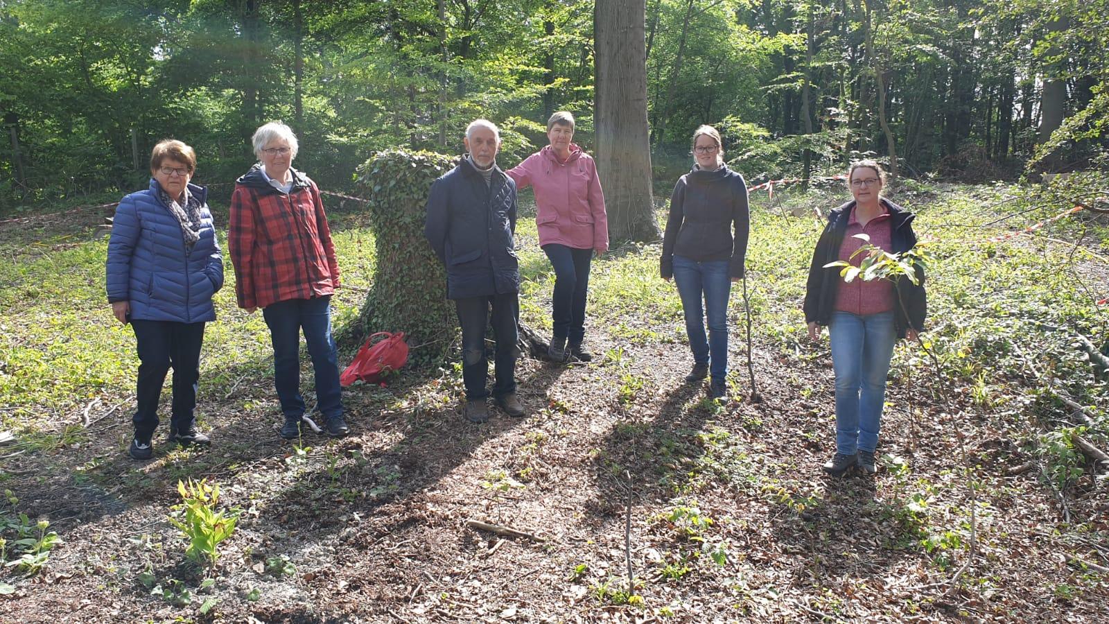 VNU - Arbeitseinsatz im Bergeler Wald 2020 - 01